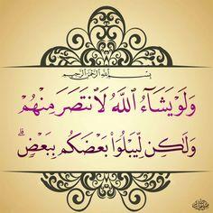 ٤- محمد