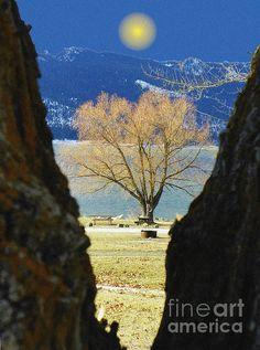Cascade Lake, Idaho   #idaho #cascadelake