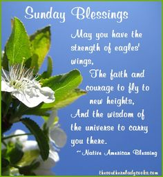 Sunday Blessings: May you have the strength of eagles' wings, the faith and courage to fly to new heights, and the wisdom of the universe to carry you there.  Native American Blessing
