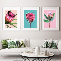 Enjoy the wonders of our Australian flora with this beautiful wall art set consisting of 3 individual prints. Included in the pack is Protea Pink; Protea Teal and Protea Peach. Gifts Australia, All Wall, Home Wall Decor, Wall Art Sets, Picture Wall, Art For Sale, Wall Art Prints, Gallery Wall, Temple