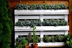 Ogrodowe DIY - wdzięczna półka na rośliny
