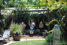 Garden Designers Roundtable: Our Home Gardens | Harmony in the Garden