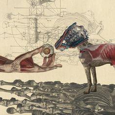 Canidae Art Print by DIVIDUS | Society6