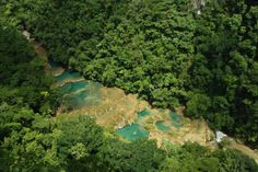 View from the top of Semuc Champey  Credits: Luis Leva