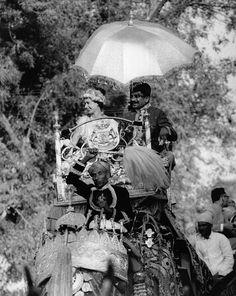 2013  Le Prince Charles de Galles et la Duchesse de Camilla de Cornouilles  Dehradun  New Delhi Kochi Mumbai   1992  Le Prince Charles et la Princesse Diana de Galles ...