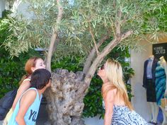 Co-founder of Bella D'Oliva LA Marchesi and her children - what a lovely olive tree!