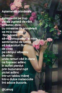 Așterne-mi primăvara Love, Amor, I Like You