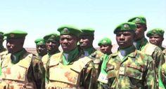 nodullnaija: Nigerian Military Contingent to the African Union ...