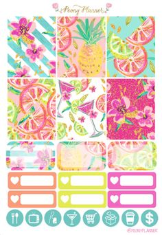 Summer Cocktail Weekly Kit Erin Condren Planner by PeonyPlanner