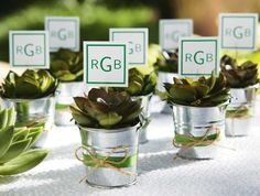 Silver Pail Favors Give your wedding day a natural vibe. Fill silver pails with succulents, surround with moss and finish with decorative ribbon and twine. These earthly keepsakes make great gifts for guests after the event. Wedding Favours, Diy Wedding, Party Favors, Wedding Gifts, Dream Wedding, Wedding Day, Wedding Souvenir, Wedding Stuff, Wedding Vintage