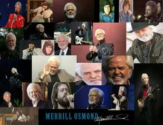Merrill collage