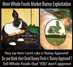 What Do People Really Think Of Whole Foods' Decision to Carry Rabbit Meat? Dead Bunny, Burny, Meat Rabbits, Intelligent People, Whole Foods Market, Whole Food Recipes, Carry On, Veganism, Bunny Rabbit
