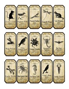 Halloween-Magic-apothecary-animal-label-stickers-set-of-15-scrapbooking-crafts