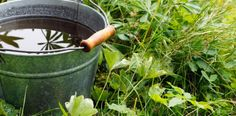 Save water by making your own rain bucket! -- An article I must save for spring!