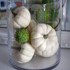 Herbstdeko mit weißen Baby Boo Kürbissen