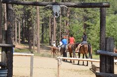 At Zephyr Cove Stables in South Lake Tahoe you can choose from their selection daily guided horseback rides – One Hour Ride, One and a Half Hour Ride, Two Hour, Breakfast, Lunch and Dinner rides available as well. Another great way to spend your Lake Tahoe family vacation in the great outdoors.