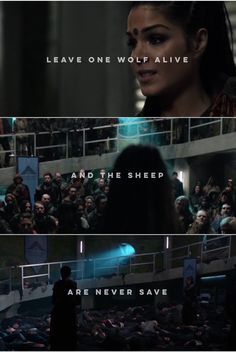 Leave one wolf alive and the sheep are never save | Octavia Blake