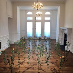 indoor rose garden installation