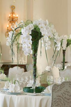 Tall vases wedding flower centerpieces - The Wedding Specialists Wedding Reception Tables, Wedding Table Centerpieces, Flower Centerpieces, Flower Decorations, Wedding Centerpieces, Wedding Decorations, Wedding Ideas, Tall Centerpiece, Centrepieces