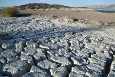 Lake Mead -- the system's largest reservoir -- will narrowly escape a shortage…