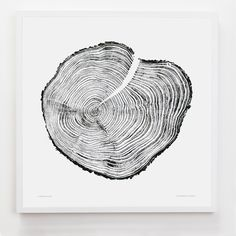 Western Red Cedar Large | Tree Rings   | Art Prints, Stationery & Gifts from Evermade
