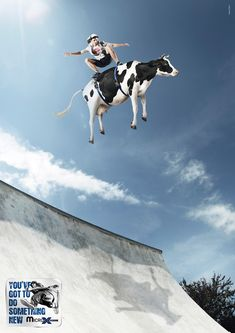 Do Something New :: Where does one buy a skate cow?  Rent?