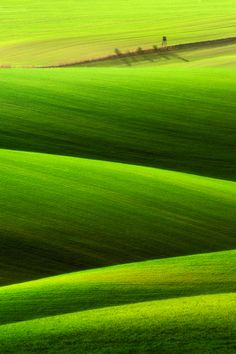 :: H & A :: tumblr - 500px: Popular photos - Spring field… by Pawel Kucharski