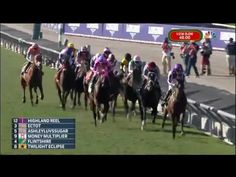 Highland Reel leads all the way in Breeders' Cup Turf | Racenet