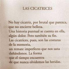 〽️Las Cicatrices...