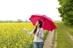 Personal Umbrella Policy – what is it? A personal umbrella policy is an optional protection that extends the liability coverage provided by an underlying policy, such as homeowners or car ins…