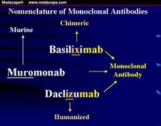 drug nomenclature suffixes and prefixes - Google Search