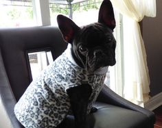 French Bulldog Style Pullover - Snow Leopard Sweater  - Photo Prop -  Pullover - Winter - Fleece - Hoodie