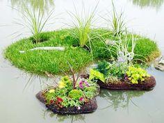 floating islands #watergarden