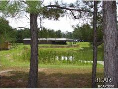 CENTRALLY LOCATED SHADED 6BR / 5BA HOME WITH 3 CAR GARAGE AND 1 BEDROOM APARTMENT ATTACHED. THERE IS A LARGE STORAGE BUILDING ATTACHED TO 1 BEDROOM APARTMENT WITH 20X20 SCREENED ROOM OVERLOOKING THE POND. THERE IS APPROX. 2+- ACRES WITH THIS HOME. HWY 79 WILL BE WIDENED AND HWY WILL BE 145' CLOSER TO HOME, SURVEY AVAILABLE. THERE IS A NEW METAL ROOF.  LOTS OF ROOM IN THE HOME, IN THE GARAGE AND IN THE LAKE HOUSE. INFO FROM PROPERTY APPRA. OFFICE, LOTS OF AMENITIES. CLICK ON PHOTO TO SEE…