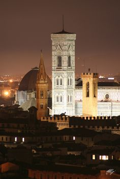Florence, one of the cities Nadine and I missed while I was in the hospital...