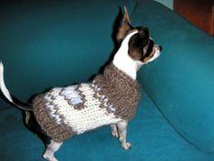 Capa de chihuahua lana orgánica por nerina52 suéter de perro