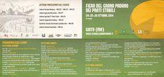 Jumpable alla Fiera del Grana Padano di Goito (MN). Primo torneo di Calciobalilla umano