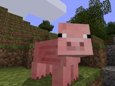 I got: Pig! Which Minecraft Animal Are You?