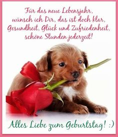 Für das neue Lebensjahr, wünsch ich Dir, das ist doch klar, Gesundheit - ツ GeburtstagsBilder, Grußkarten und Geburtstagsgrüße ツ Birthday Wishes For Women, Happy Birthday Quotes, Birthday Greetings, Birthday Clips, Animal Wallpaper, Wallpaper Desktop, Greeting Cards Handmade, Happy Day, Cute Wallpapers