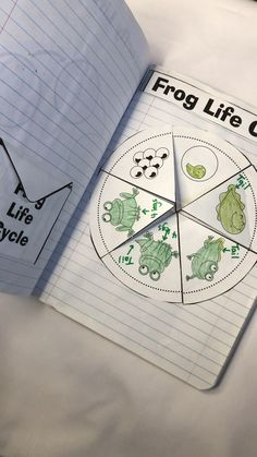 Student Gifts Discover Life Cycles Interactive Notebook If your students love science and learning about life cycles this is perfect! Immerse your students in the life cycle of a butterfly frog flower and chicken. Best for first or second grade. Science Experiments Kids, Science For Kids, Science Projects, Earth Science Lessons, Science And Nature, Preschool Learning Activities, Homeschool Kindergarten, Human Body Activities, Sequencing Activities