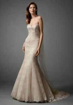 Fall in love with our new Colette Lace in a classic fit and flare silhouette with a sweetheart neckline. Chapel Train.