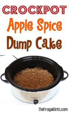 Crockpot Apple Dump Cake Recipe - from TheFrugalGirls.com