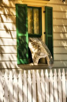 Summer breeze..vintage wood cottage..billowing curtain + green shutters + picket fence + beachy + county