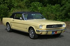 1964-½ Ford Mustang is an Affair to Remember Photo & Image Gallery