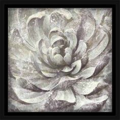 Distressed Neutral Close Up Succulent Plant Nature Painting Grey & White, Framed Canvas Art by Pied Piper Creative, Gray