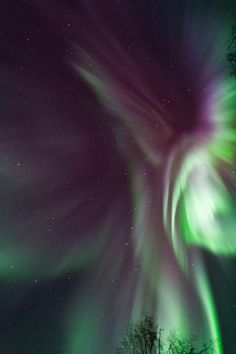 ✯ Aurora In Flight