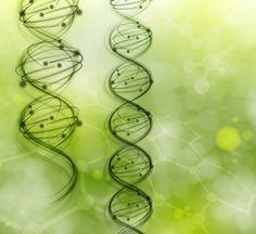 L'homme est bien plus qu'un simple ADN
