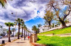 20 pictures of tetouan city - morocco Morocco, Travelling, Sidewalk, City, Pictures, Walkway, Photos, Walkways, Resim
