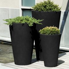 Ruvalcaba Fiberglass Clay Composite Pot Planter & Reviews | Birch Lane