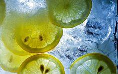 1920x1200px lemon computer backgrounds wallpaper by Dabria Bush